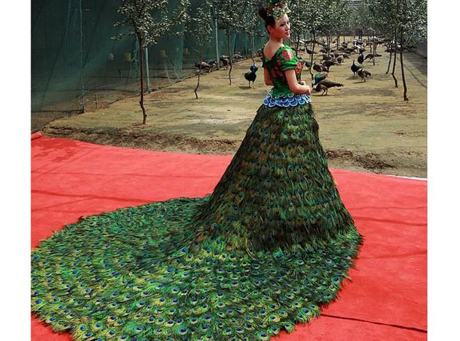 яркое необычное платье выполнено из павлиньих перьев